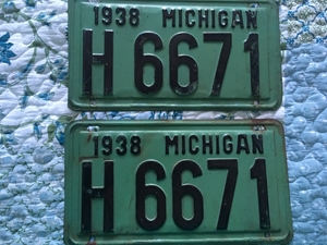 Picture of 1938 Michigan Pair #H6671