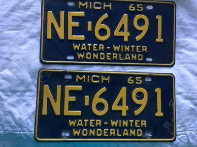 Picture of 1965 Michigan Pair #NE-6491