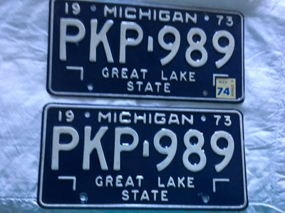 Picture of 1973 Michigan Pair #PKP-989