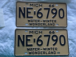 Picture of 1966 Michigan Pair #NE-6690