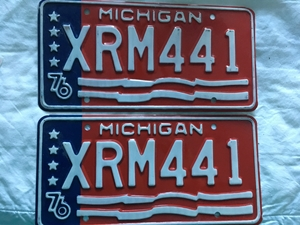 Picture of 1976 Michigan Pair #XM-441